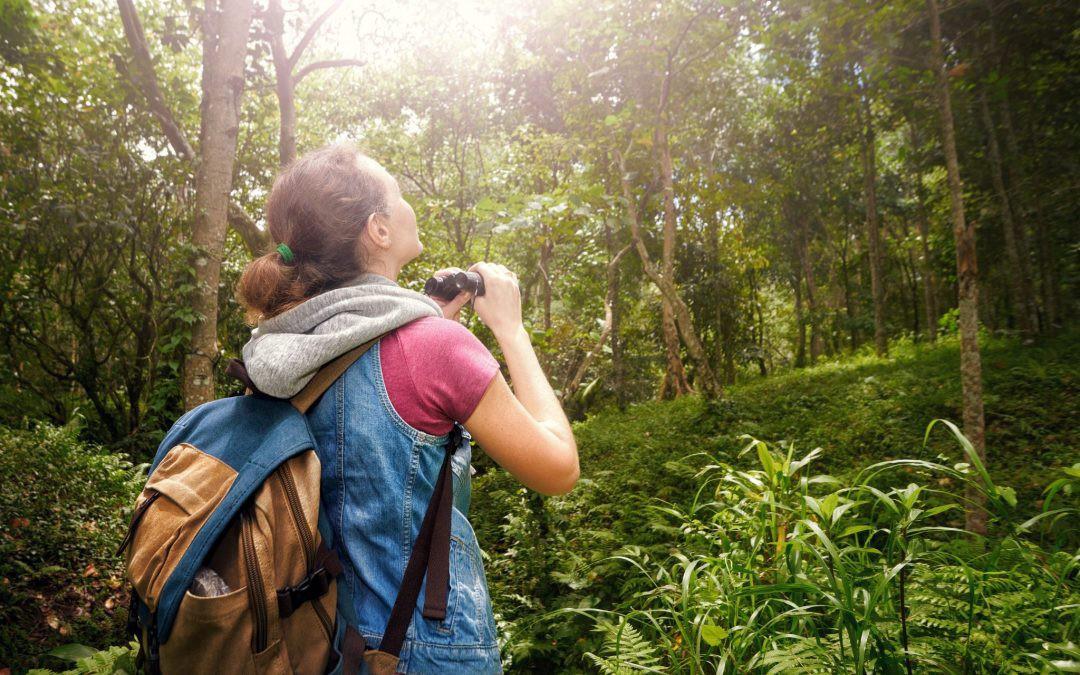 Du lịch sinh thái là gì?