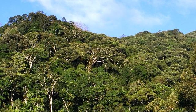 Ảnh điểm du lịch bảo vệ môi trường sinh thái